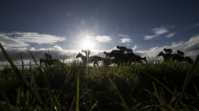 Runners race under a blue sky at Cork on Saturday