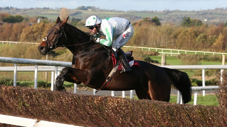 Our Duke: is on course to run at Gowran Park on Saturday