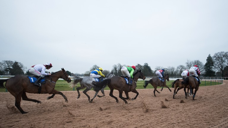 This is jump racing: runners take a fair chunk of all-weather on the turn for home. The surface has been added to the bottom bend this season