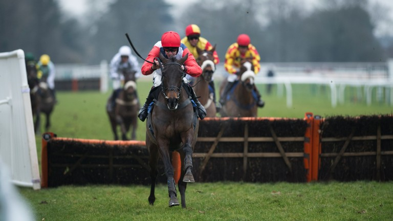 Let's Dance: the opening maiden hurdle goes to My Dance and Aidan Coleman