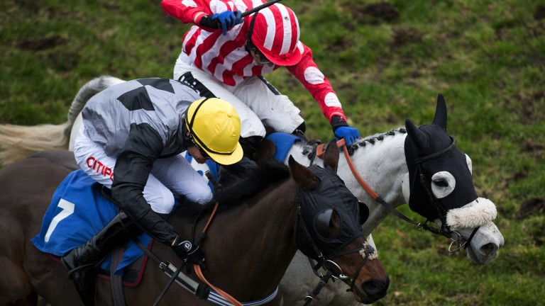 Daring run: a thrilling finish to the 2m1½f handicap hurdle as Blue April (left) gets the better of 7-2 favourite Be Daring