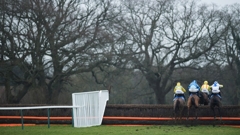 Fontwell: Kentford Heiress finished second in the Mares Handicap Hurdle last year