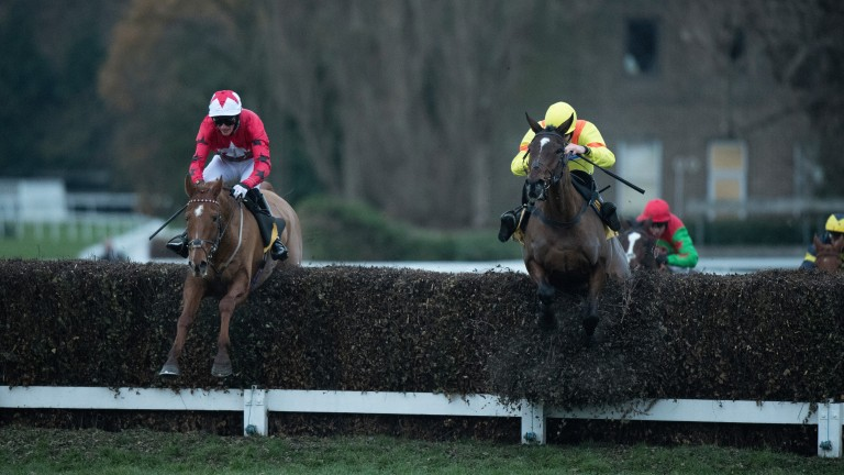 Cresswell Breeze: (right): runs in the Devon National Handicap Chase at Exeter on Friday