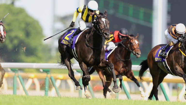 Soul Stirring (left): Japanese Oaks-winning daughter of Frankel has produced her first foal