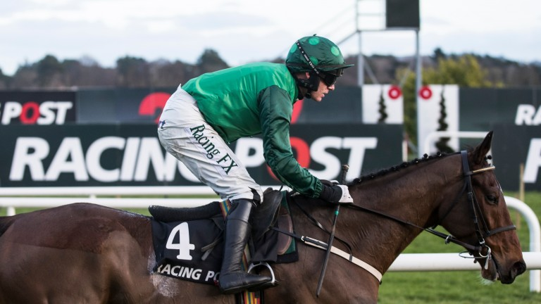 Footpad: popular at 11-8 with be365 for the Racing Post Arkle