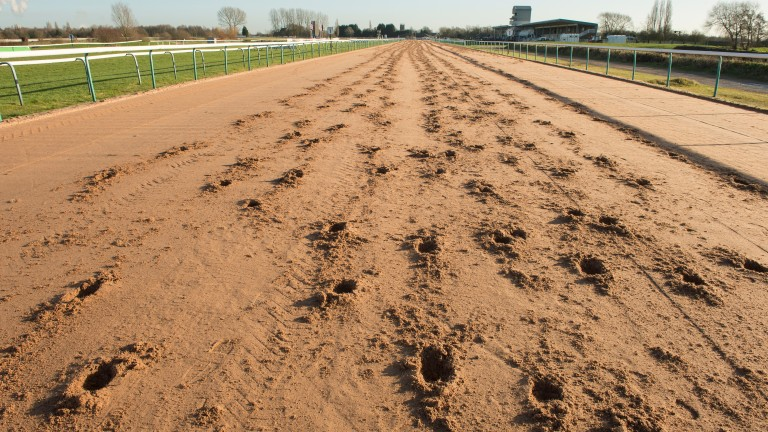 Southwell: 2.15 start for today's meeting