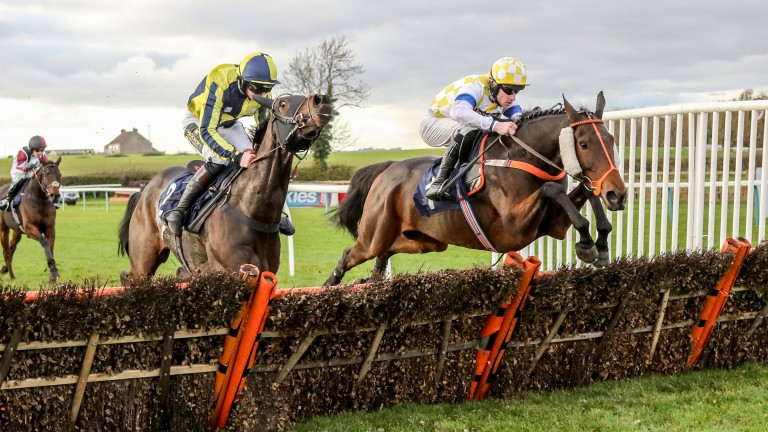 Sun Cloud (right) warms up for his bid to land a second North Yorkshire Grand National by scoring over hurdles at Sedgefield