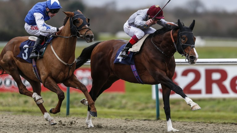 He's back! Toast Of New York scores at Lingfield last month on his first start for 1,130 days