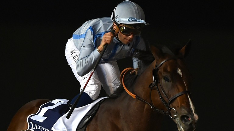 Heavy Metal: bids for another victory at Meydan