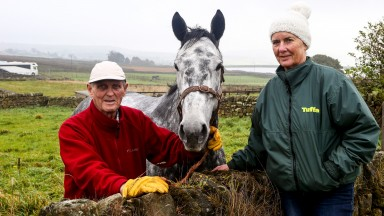 Vintage Clouds with Harvey and Sue Smith: he should run in the Gold Cup, says Terry Browne