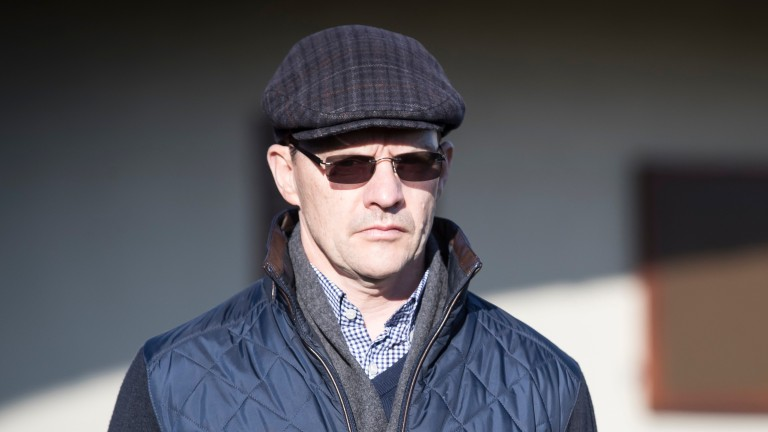 Aidan O'Brien: gave evidence at the hearing
