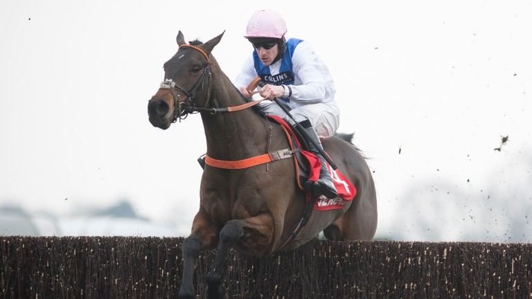 Waiting Patiently: an emerging talent for Malton trainer Malcolm Jefferson
