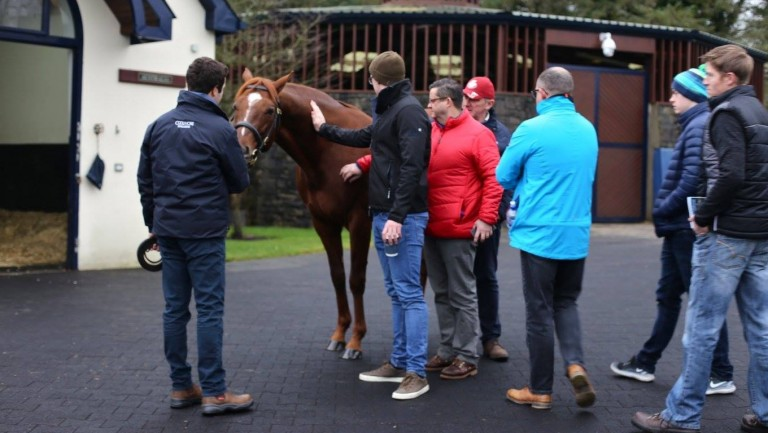 Fans get up close and personal with their heroes at Coolmore