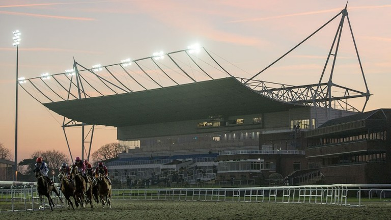 Kempton: stages racing on Wednesday evening