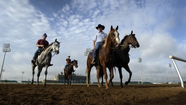 Horses and riders on the morning track at Lone Star Park in Grand Prairie Dallas Texas 25th October 2004Mirrorpix