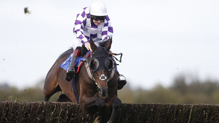 Orbasa's win at Wincanton is Henry Morshead's best moment in the saddle