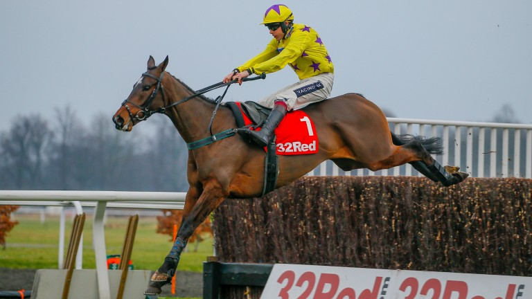 Fountains Windfall: classy chaser suffered fatal injury when schooling on Friday