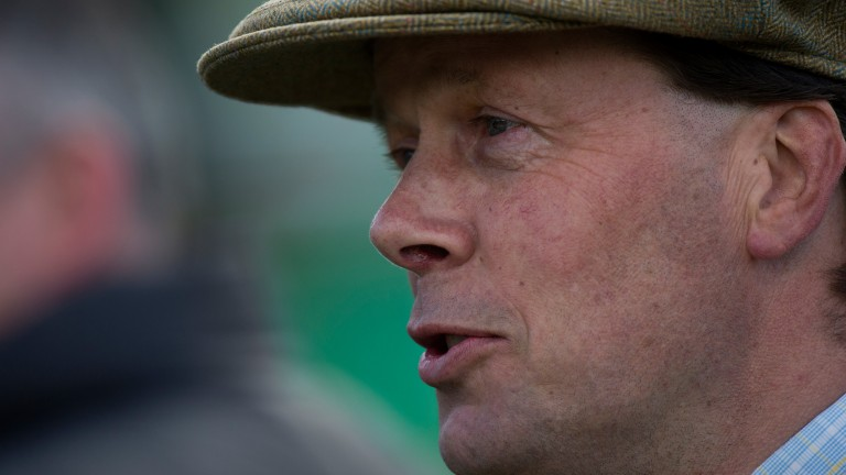 Henry Daly: 'reliability is his great quality'