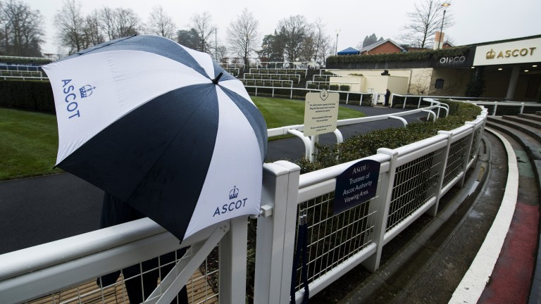 Damp day: umbrellas are required as the rain falls