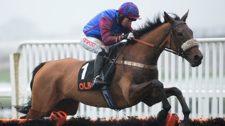 Seeing a stride: La Bague Au Roi pings the final flight under Noel Fehily on her way to an easy victory