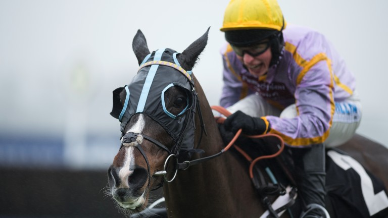 Ride him out: James Bowen bags another big weekend prize as he drives Jenkins to success