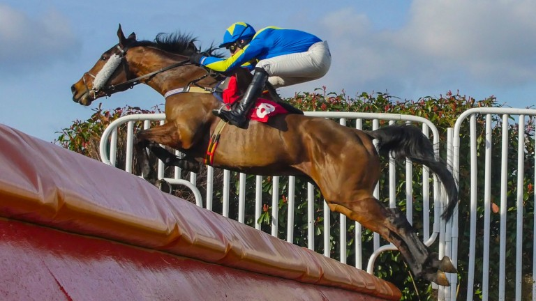 Speredek and Danny cook on the way to victory at Sandown