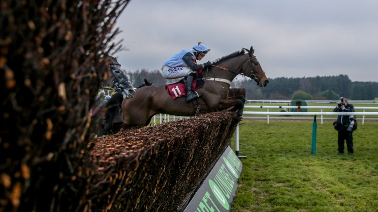 The Dutchman: on his way to victory at Haydock