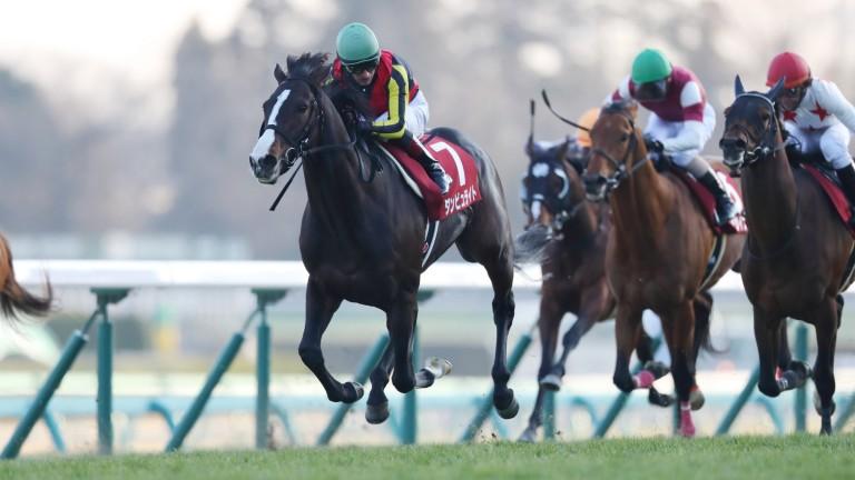 Danburite wins the Grade 2 American Jockey Club Cup at Nakayama
