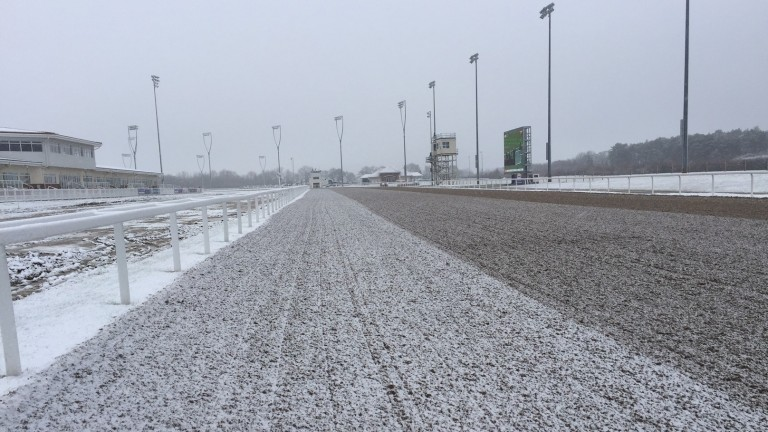 The scene at a snowy Chelmsford last month where racing was delayed for over an hour