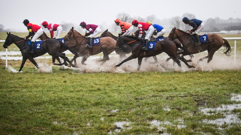 That's pretty wet: conditions are desperate as runners gallop through the wash in the opening maiden hurdle