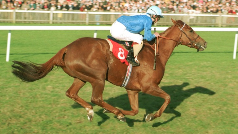 Hatoof and Walter Swinburn land the 1993 Champion Stakes