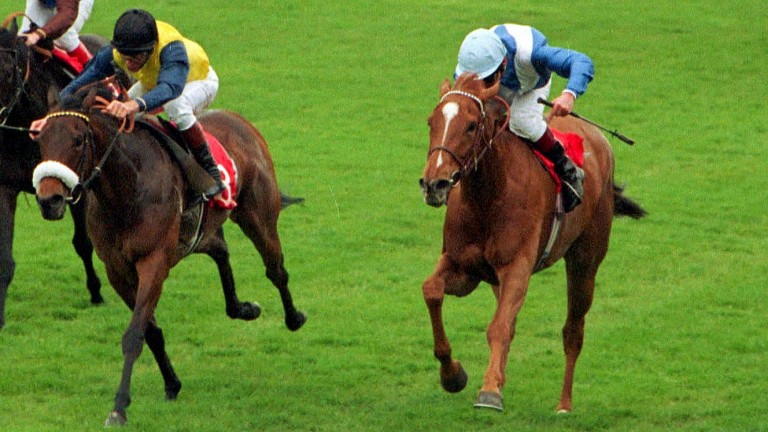 Hatoof and Walter Swinburn (right) battle home from Marling in the 1992 1,000 Guineas