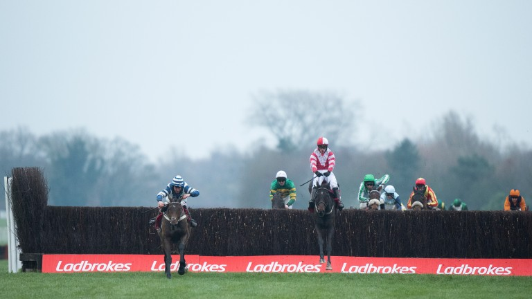Whisper (left) leads Total Recall over the final fence in the Ladbrokes Trophy