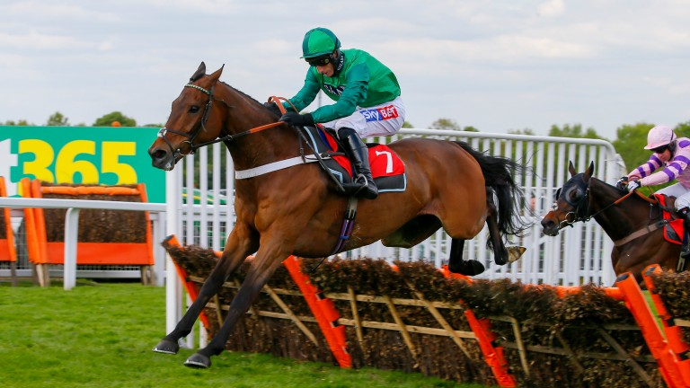 L'Ami Serge (Daryl Jacob): engaged over hurdles at Cheltenham and fences at Doncaster