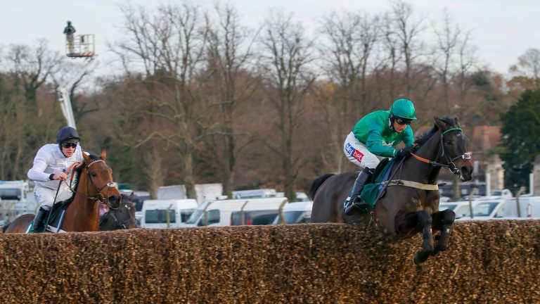 Sceau Royal (Daryl Jacob) leads Brain Power in the randoxhealth.com Henry VIII Novices' Chase at Sandown