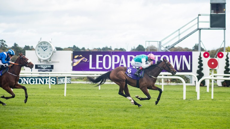 Contingent runs out an impressive winner on her debut at Leopardstown