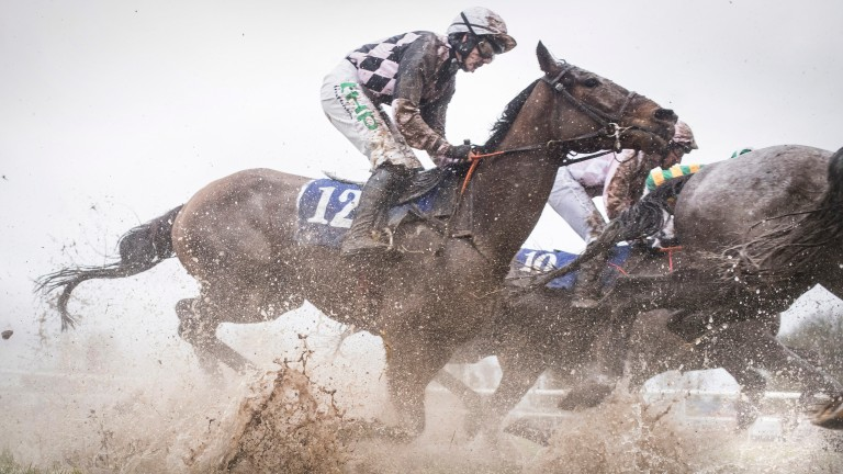 Conditions at Thurles on Sunday highlight how much rain fell in the area over the weekend