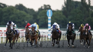 Kempton Park: hosts Divine Call's 100th start on Wednesday