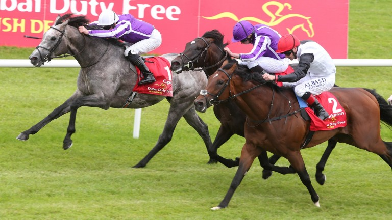Capri (far side): could return at Naas on Sunday