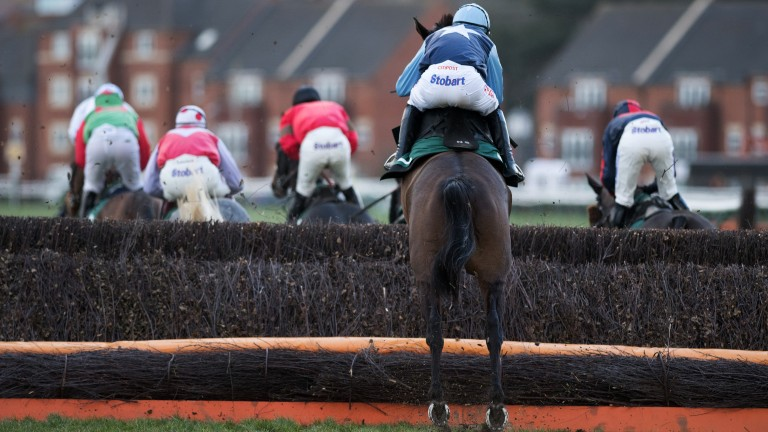 Playing catchup: Scorchio follows the field in the 3m1f handicap chase