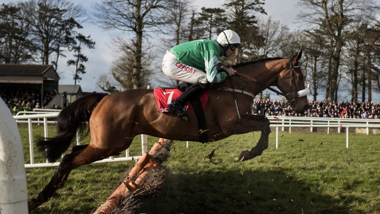 Winging it: Presenting Percy and Davy Russell impress in the Grade 2 Galmoy Hurdle at Gowran Park