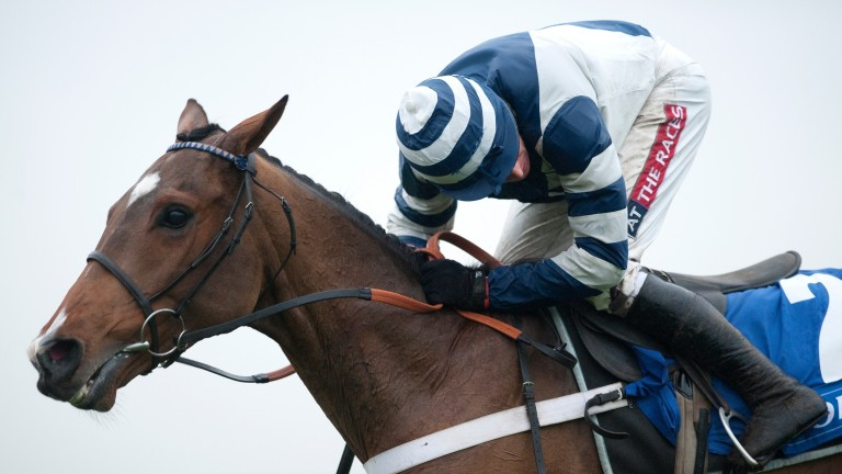 Oscar Whisky: sent off favourite for the 2013 World Hurdle but was always better over shorter trips