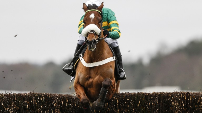 Coney Island: schooled well after racing at Leopardstown on Monday