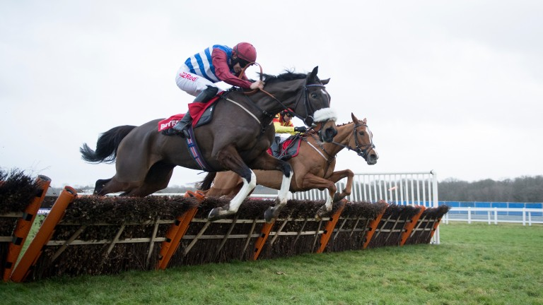 Mulcahys Hill (near): leading Becher Chase contender