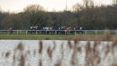 On their way: runners in the 2m3½f novices' handicap hurdle head down the back straight