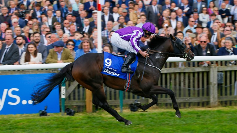 US Navy Flag: will be partnered by Ryan Moore at the Curragh on Saturday