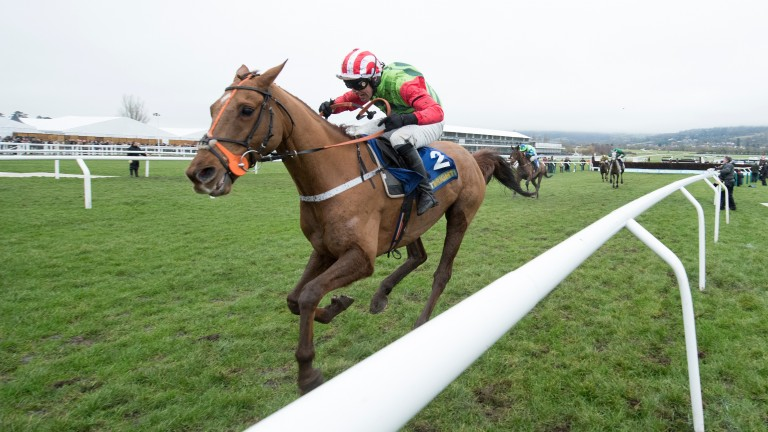 Definitly Red pulls well clear to land the Cotswold Chase at odds of 7-1