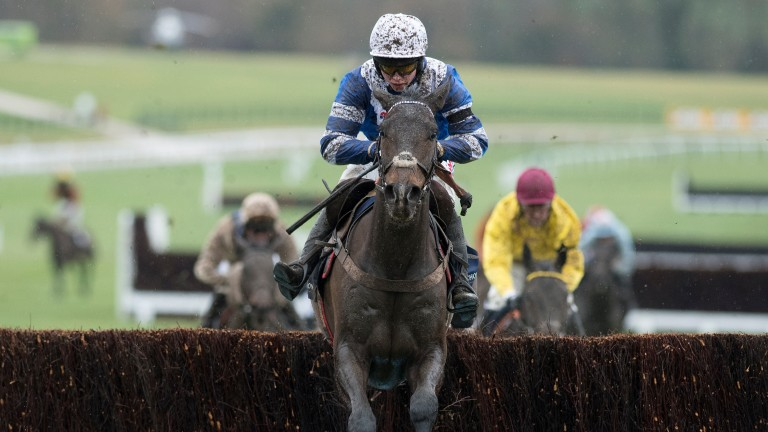 Frodon: has not won over further than two miles five furlongs