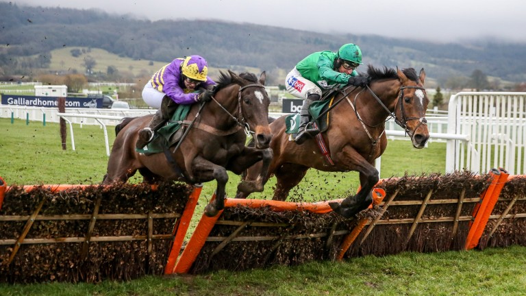 A thrilling finish to the Cleeve Hurdle as Agrapart (left) and Wholestone jump the last as one