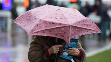 Umbrella up: a racegoer shields herself from the persistent rain on festival trials day